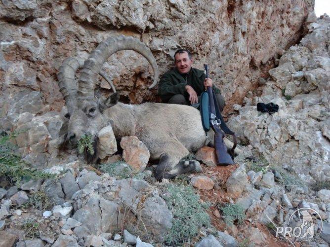 20.09.2012 Hunting in