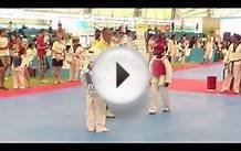 The 7th World Taekwondo Culture EXPO 2013,Alibi of Kazakhstan